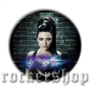 Magnetka EVANESCENCE-Amy Lee
